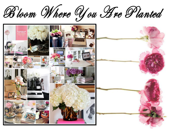bloomwhereyouareplanted